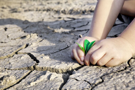 nghi luan xa hoi ve bien doi khi hau Nghị luận xã hội về biến đổi khí hậu