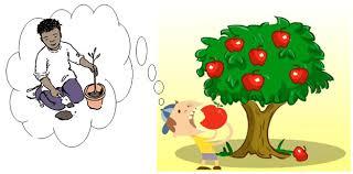"""van mau giai thich cau tuc ngu an qua nho ke trong cay Giải thích câu tục ngữ """"Ăn quả nhớ kẻ trồng cây"""""""