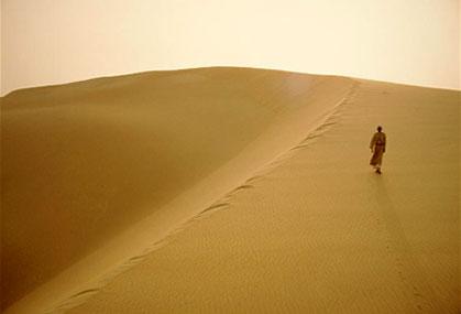 van mau phan tich bai ca ngan di tren cat Phân tích Bài ca ngắn đi trên bãi cát của Cao Bá Quát