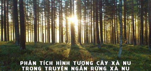 van mau phan tich hinh tuong cay xa nu trong truyen rung xa nu Phân tích hình tượng cây Xà nu trong truyện ngắn Rừng Xà nu của Nguyễn Trung Thành