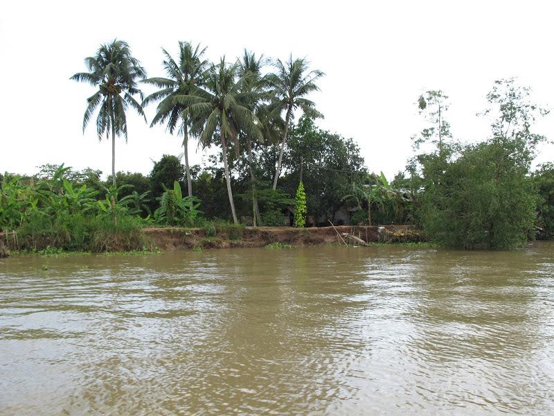 IMG 4426 Tả dòng sông mùa lũ ở quê em