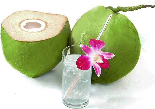 cong dung cua qua dua 1 - Tả quả dừa lớp 2, bài văn miêu tả quả dừa