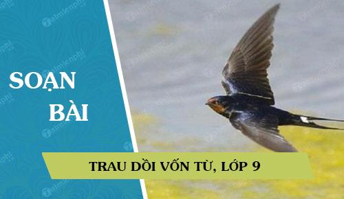 soan bai trau doi von tu lop 9 37872 - Soạn bài lớp 9: Trau dồi vốn từ
